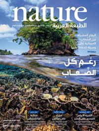 الأعداد الكاملة من Nature الطبعة العربية 58c0ea00a0c274ea0f8b45fb